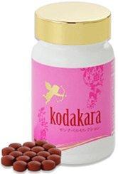 kodakara(コダカラ)